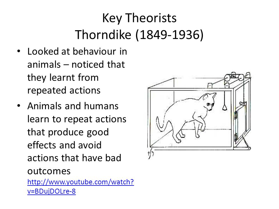 Key Theorists Thorndike (1849-1936)