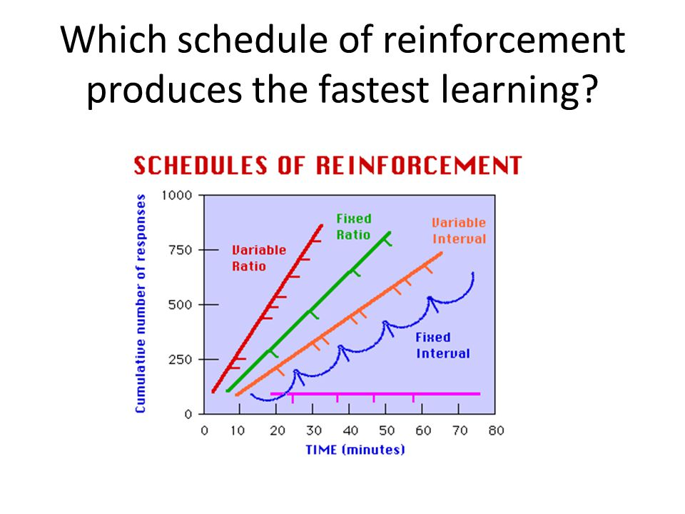 Which schedule of reinforcement produces the fastest learning