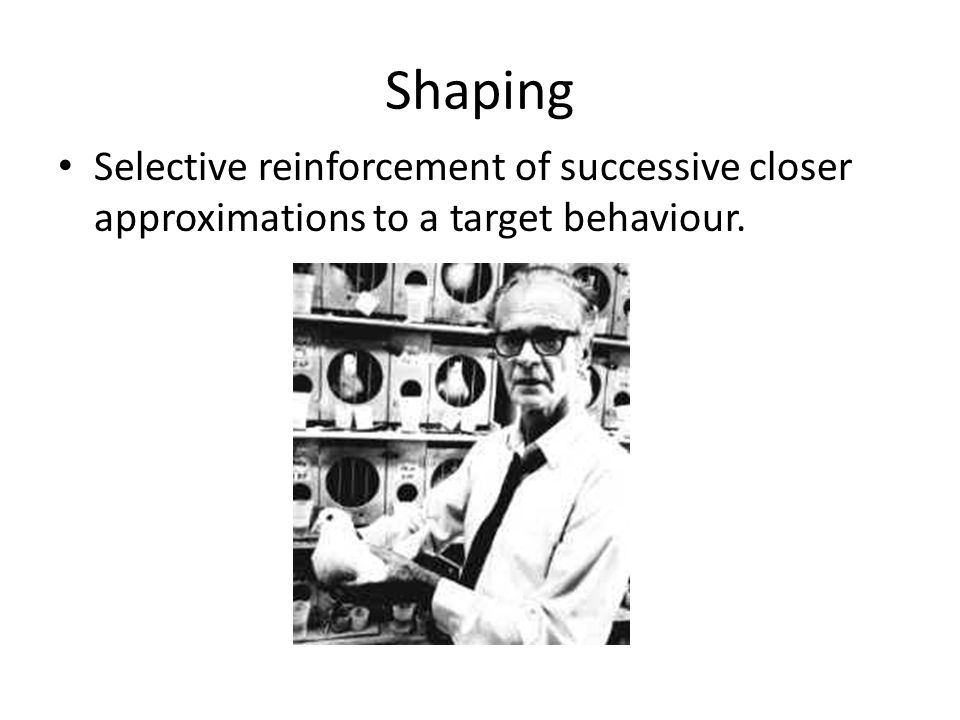 Shaping Selective reinforcement of successive closer approximations to a target behaviour.