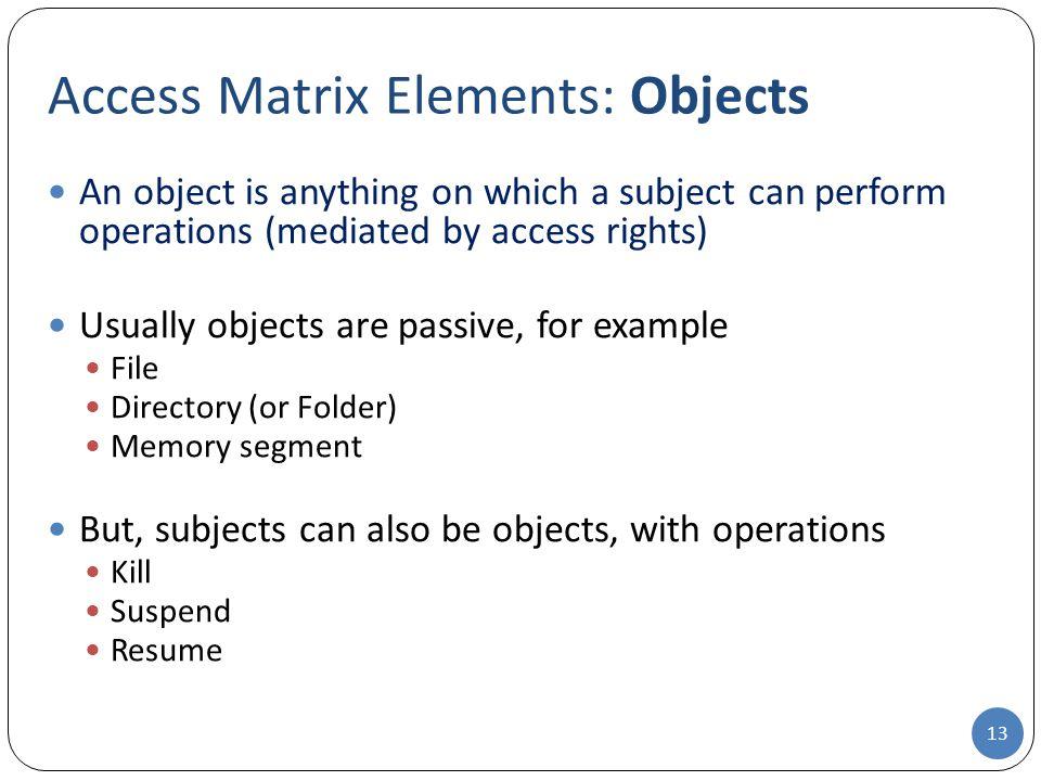 Access Matrix Elements: Objects