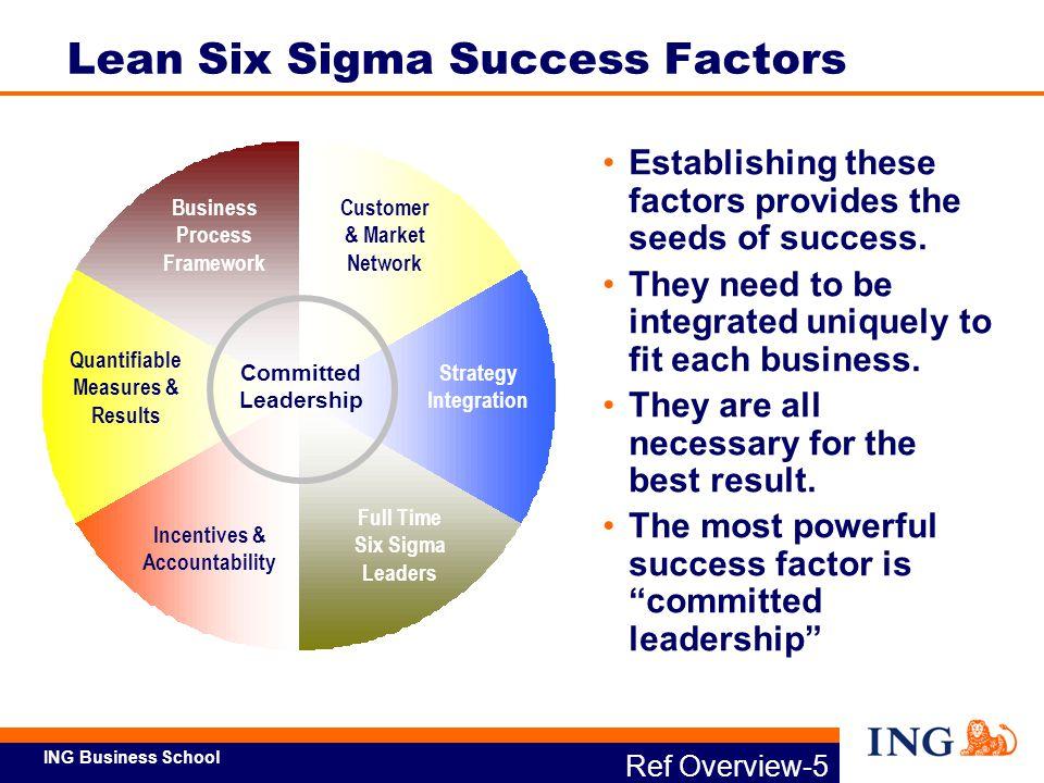 Lean Six Sigma Success Factors