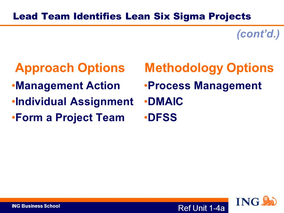 Lead Team Identifies Lean Six Sigma Projects