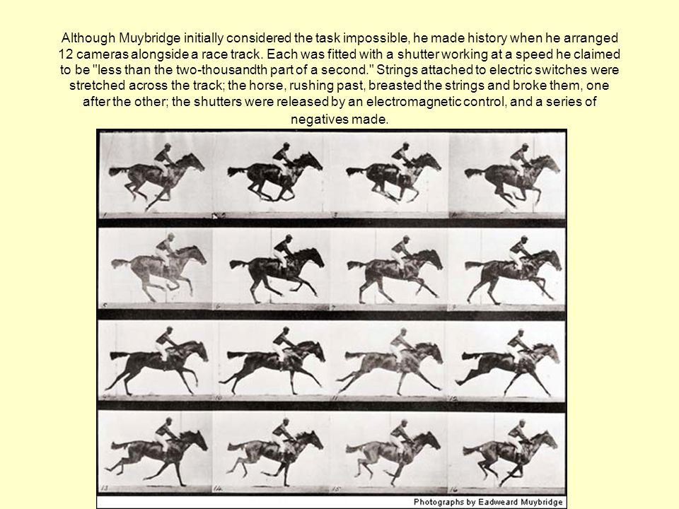 Although Muybridge initially considered the task impossible, he made history when he arranged 12 cameras alongside a race track.