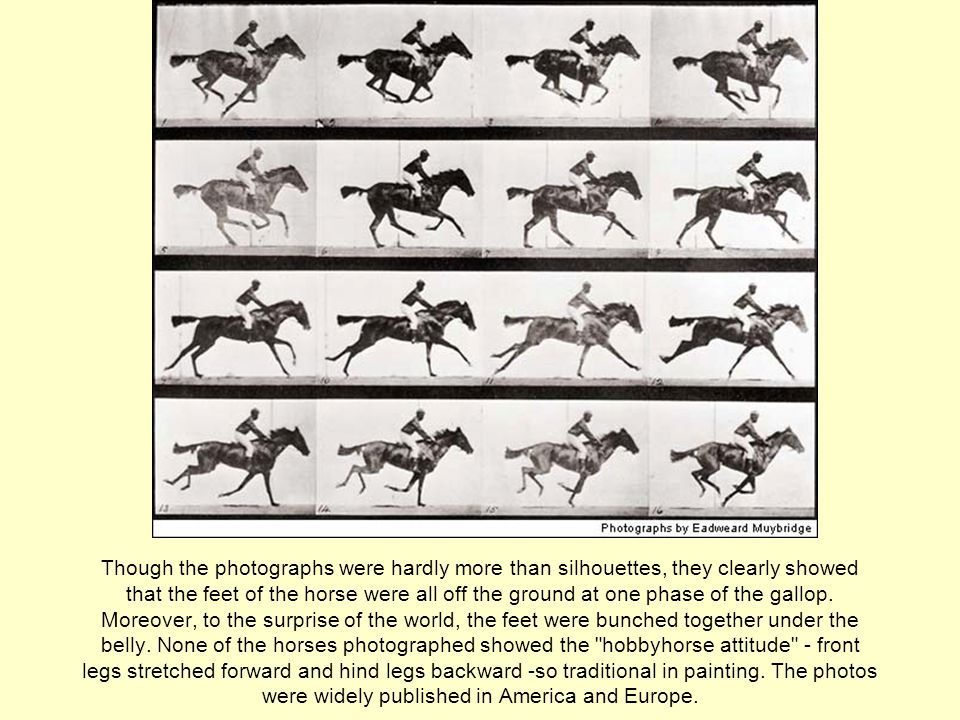 Though the photographs were hardly more than silhouettes, they clearly showed that the feet of the horse were all off the ground at one phase of the gallop.