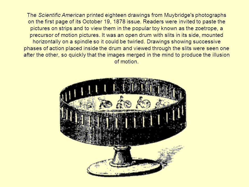 The Scientific American printed eighteen drawings from Muybridge s photographs on the first page of its October 19, 1878 issue.