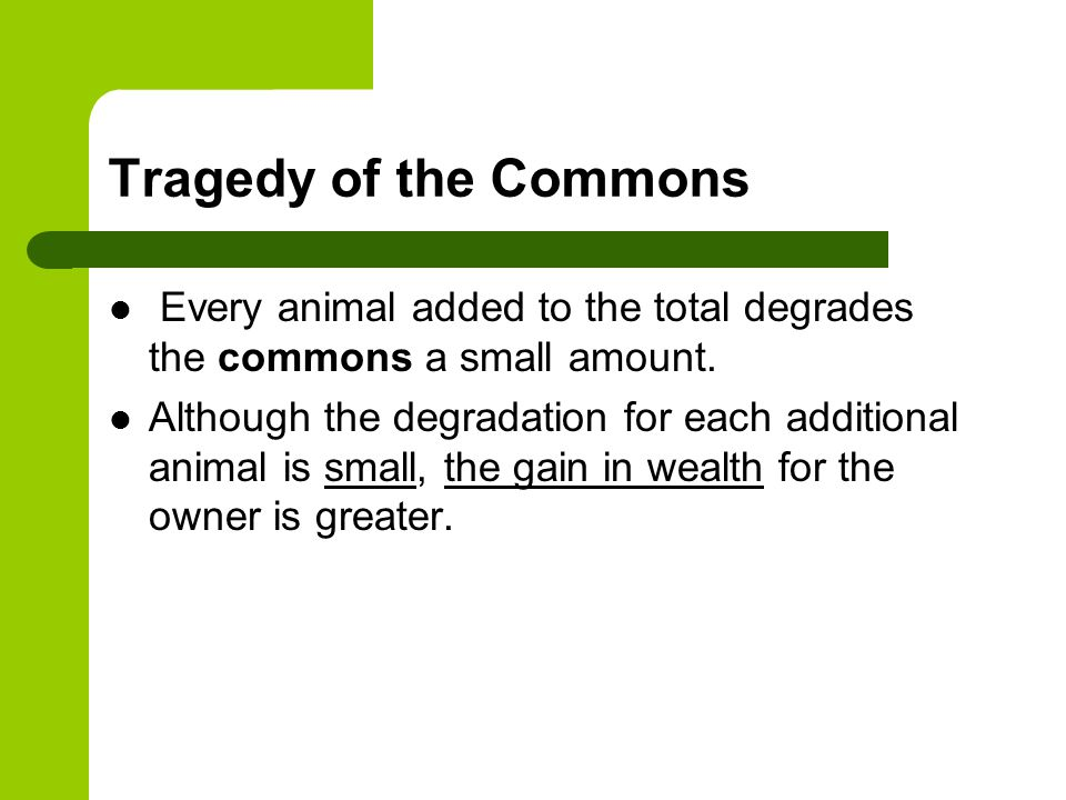 Tragedy of the Commons Every animal added to the total degrades the commons a small amount.