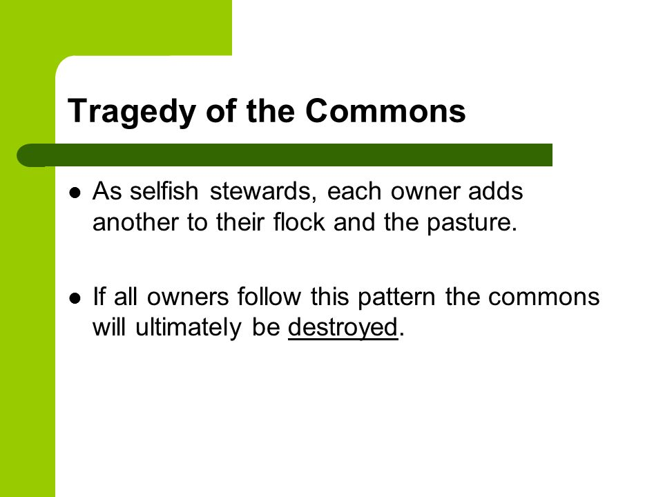 Tragedy of the Commons As selfish stewards, each owner adds another to their flock and the pasture.