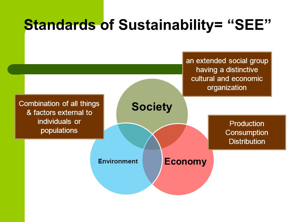 Standards of Sustainability= SEE