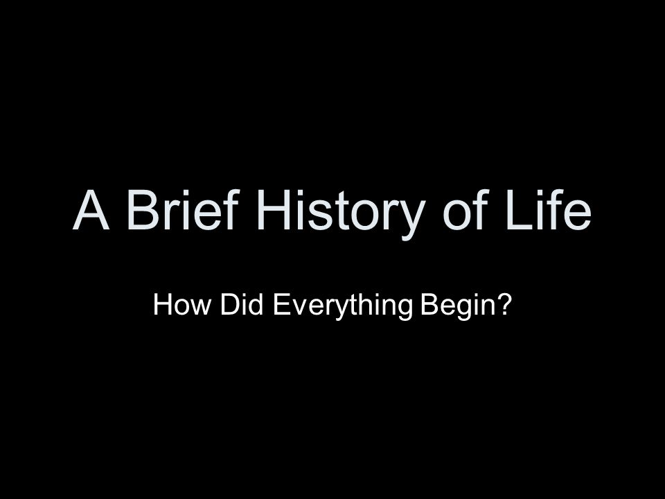 How Did Everything Begin
