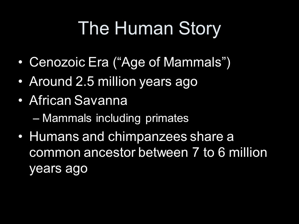 The Human Story Cenozoic Era ( Age of Mammals )
