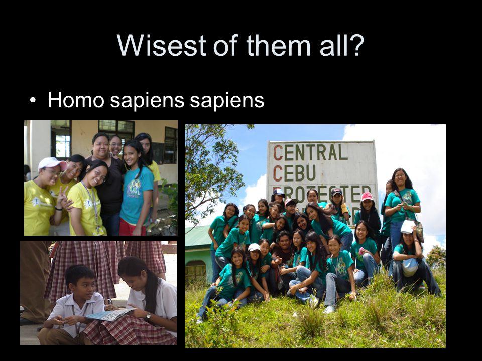 Wisest of them all Homo sapiens sapiens