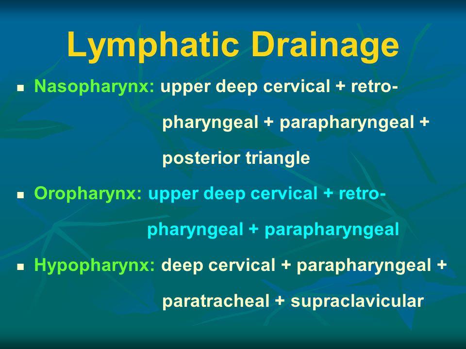 Lymphatic Drainage Nasopharynx: upper deep cervical + retro-