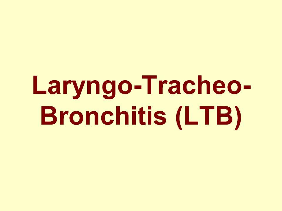 Laryngo-Tracheo-Bronchitis (LTB)