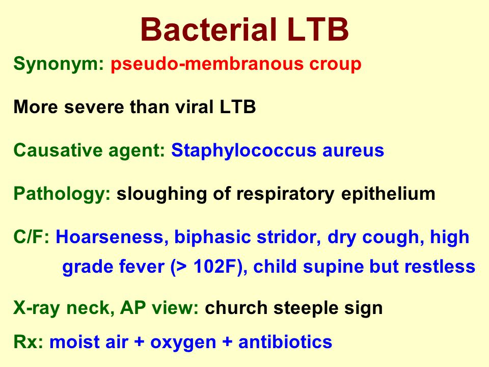 Bacterial LTB Synonym: pseudo-membranous croup