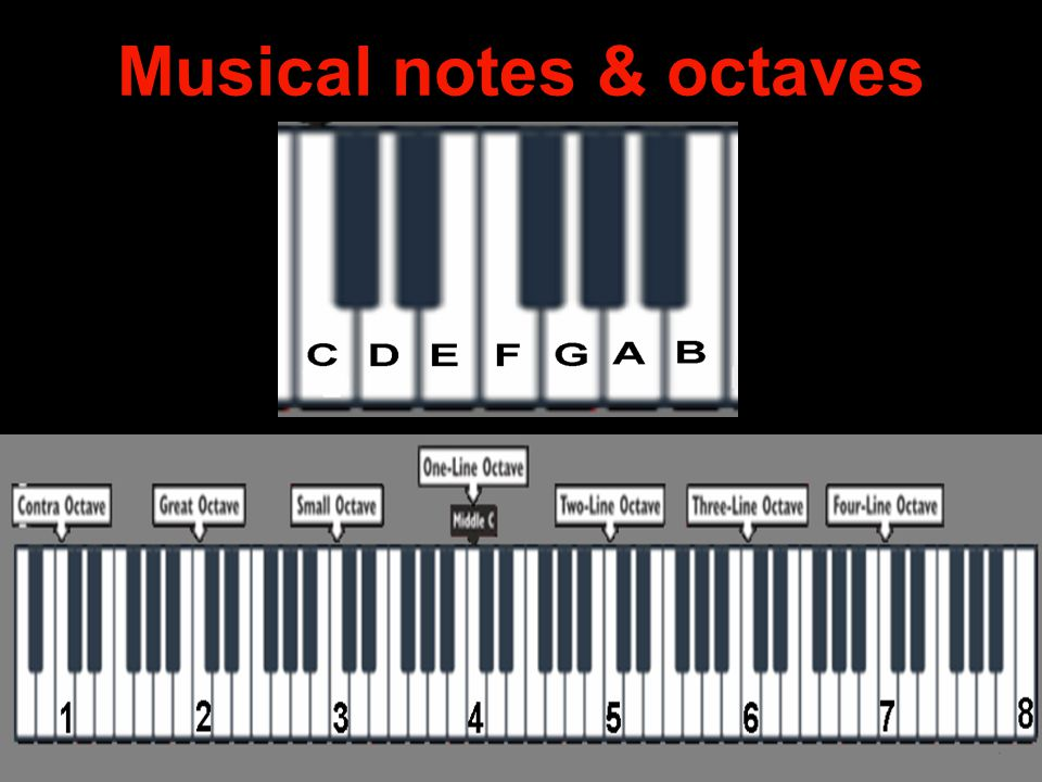 Musical notes & octaves