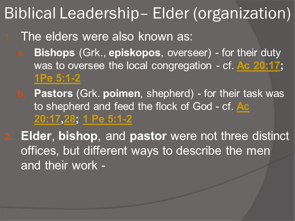 Biblical Leadership– Elder (organization)