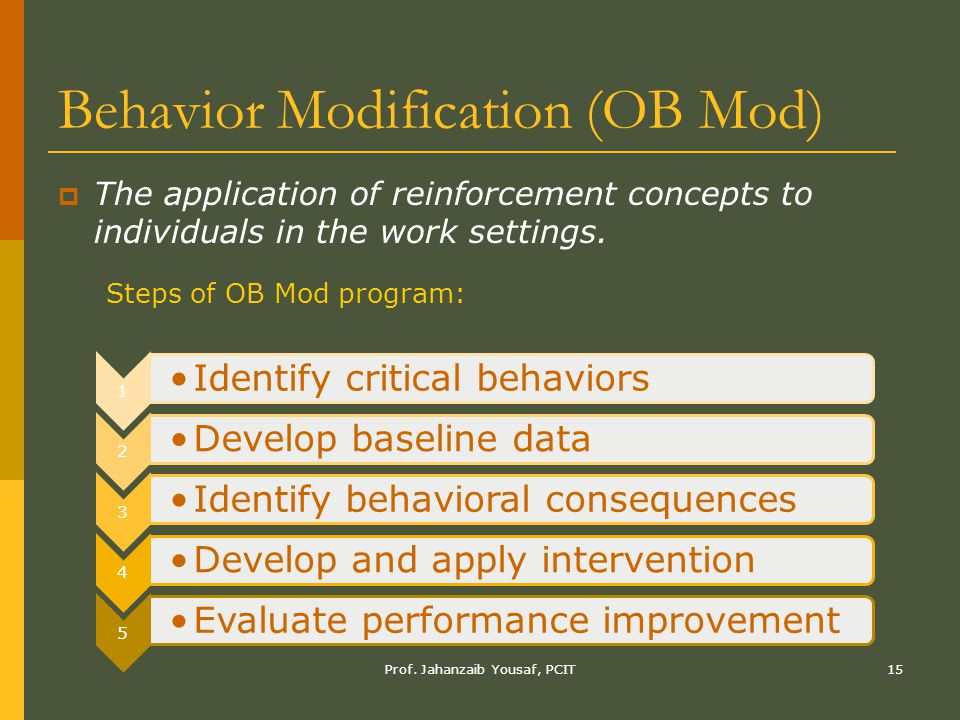 behaviour modification program