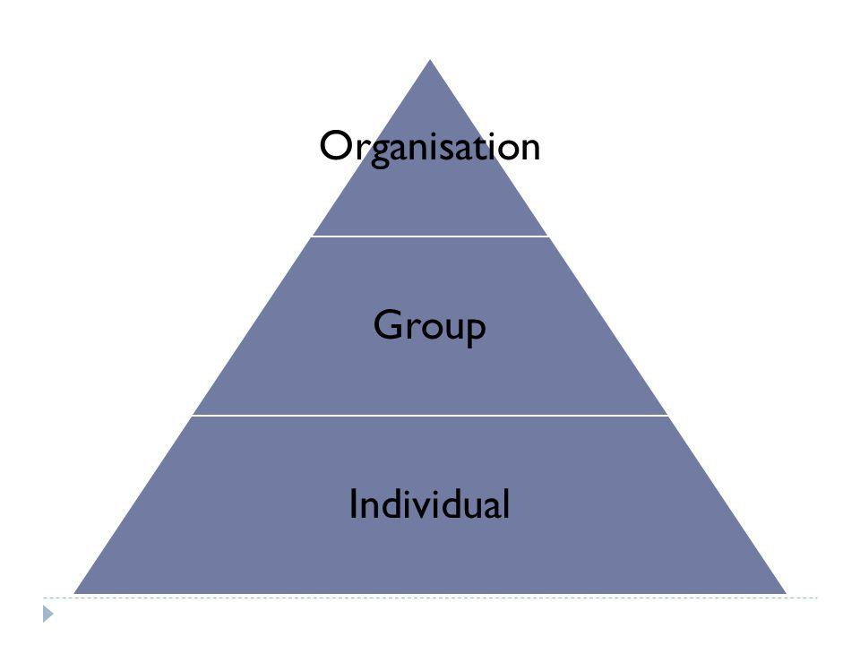 Organisation Group Individual