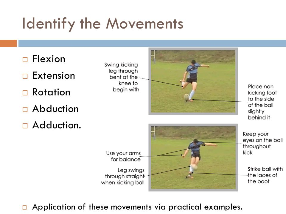 Identify the Movements