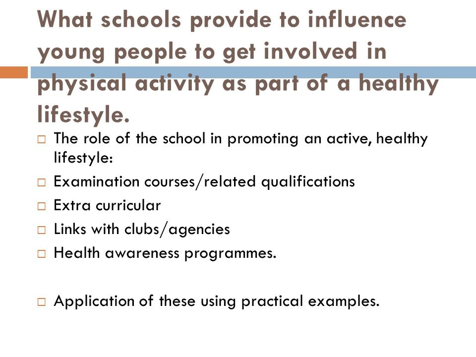 What schools provide to influence young people to get involved in physical activity as part of a healthy lifestyle.
