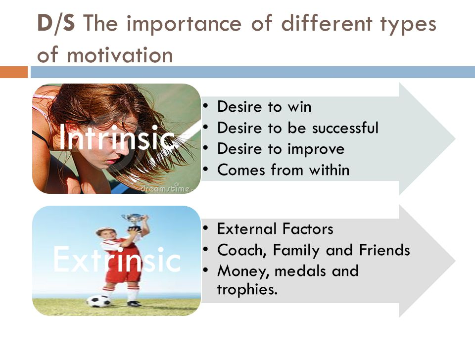 D/S The importance of different types of motivation
