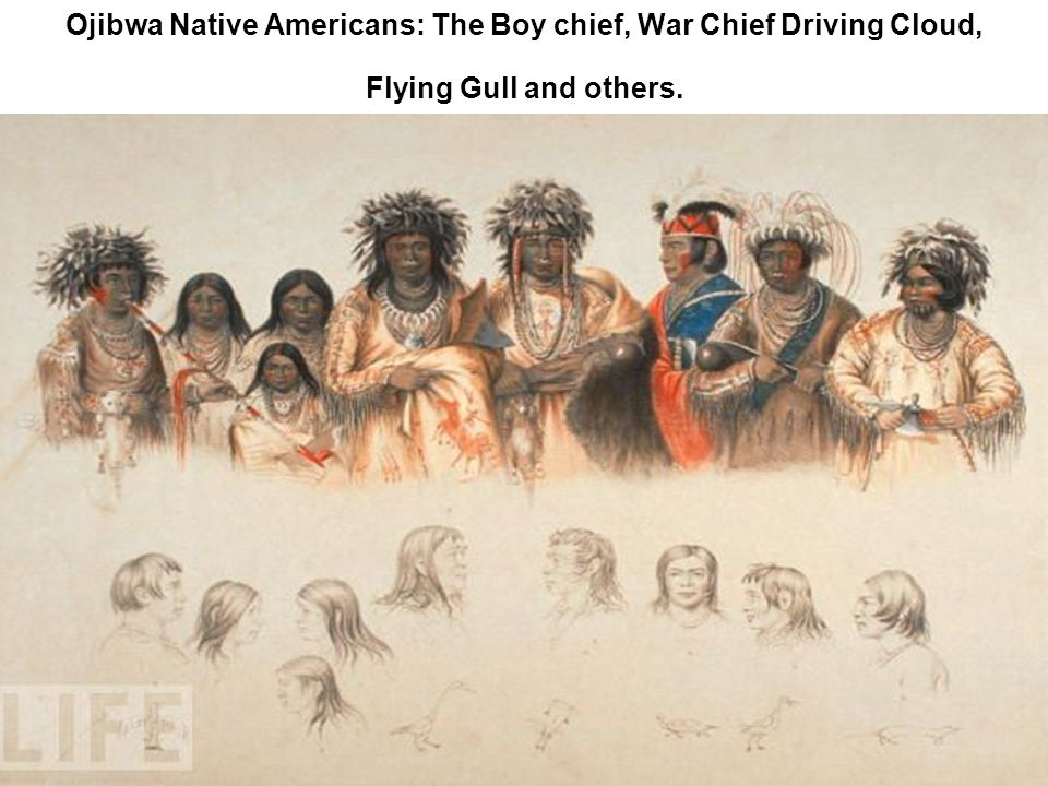 Ojibwa Native Americans: The Boy chief, War Chief Driving Cloud, Flying Gull and others.