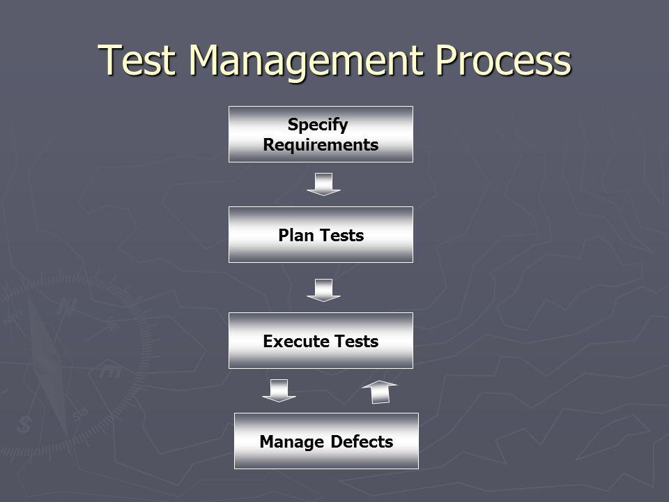 Test Management Process