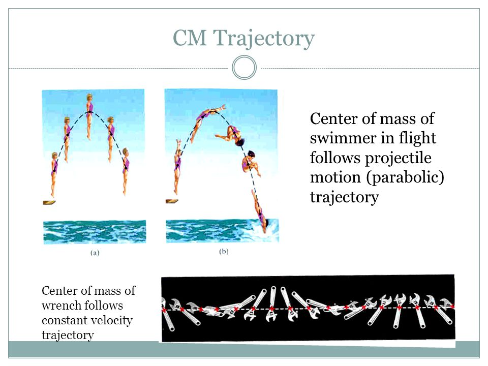CM Trajectory Center of mass of swimmer in flight follows projectile motion (parabolic) trajectory.