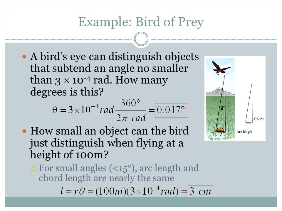Example: Bird of Prey A bird's eye can distinguish objects that subtend an angle no smaller than 3  10-4 rad. How many degrees is this