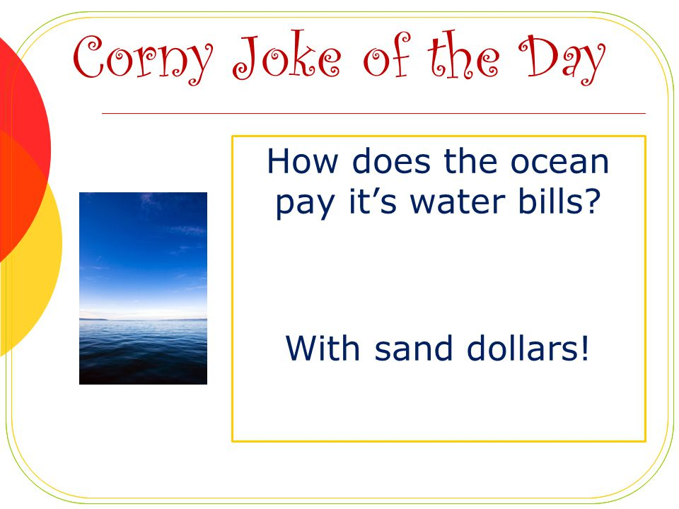 How does the ocean pay it's water bills With sand dollars!