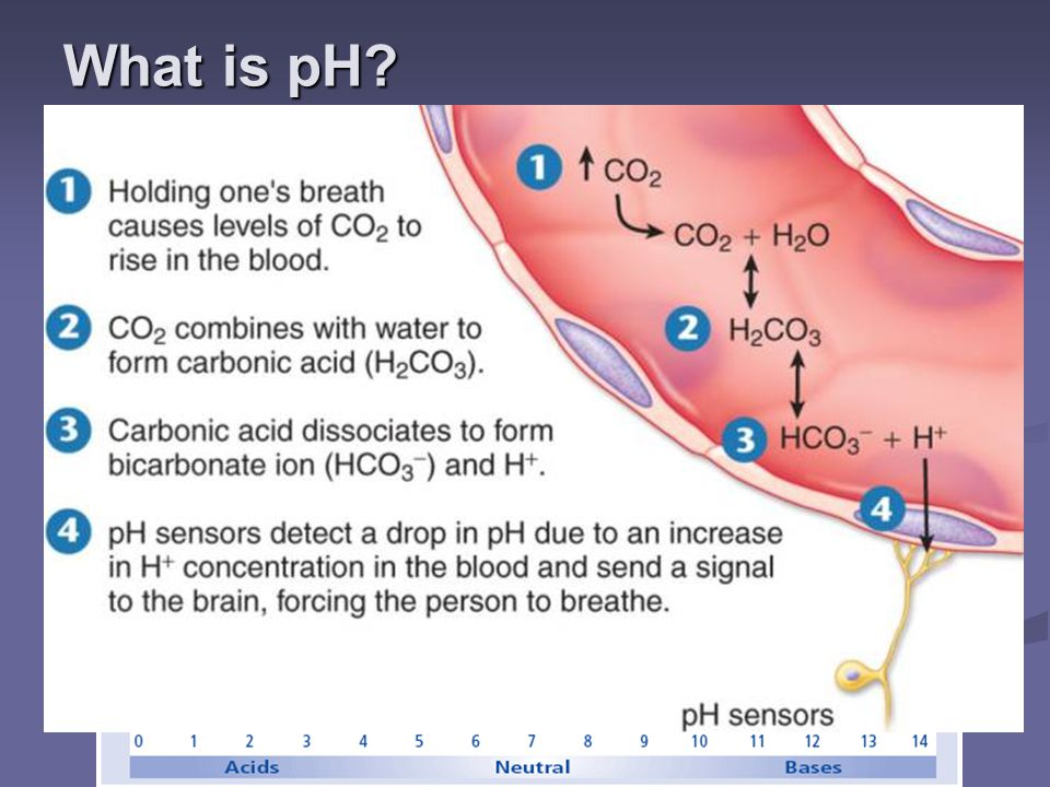 What is pH pH – a number used to indicate how acidic or basic a solution is. The pH scale goes from 0 to 14.
