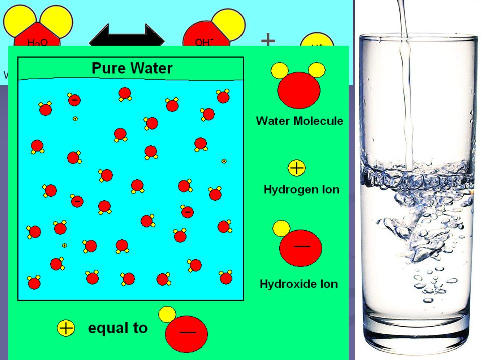 Dissociation of Water In any sample of water, very few of the molecules are dissociated at any one time.