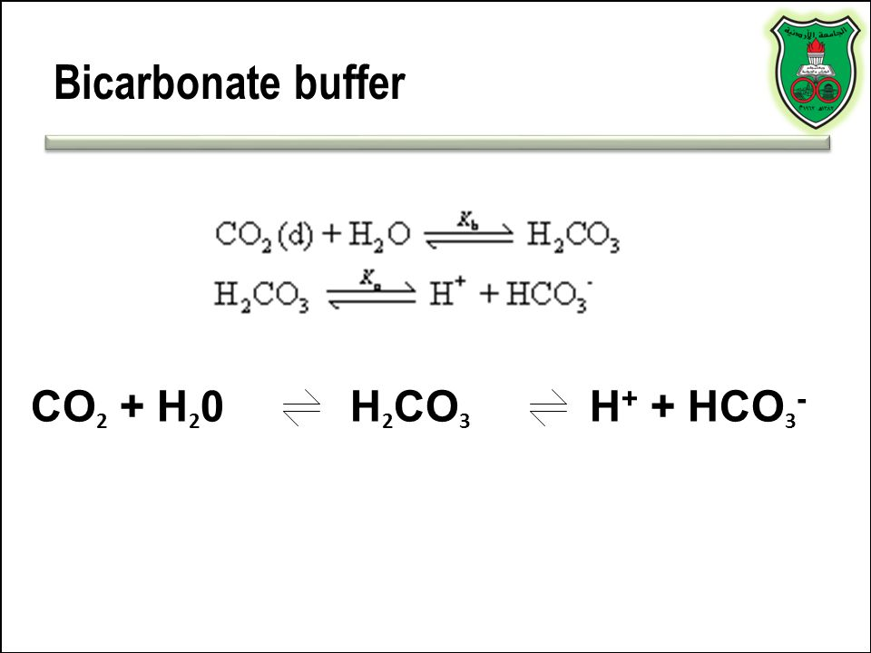 Bicarbonate buffer CO2 + H20 H2CO3 H+ + HCO3-