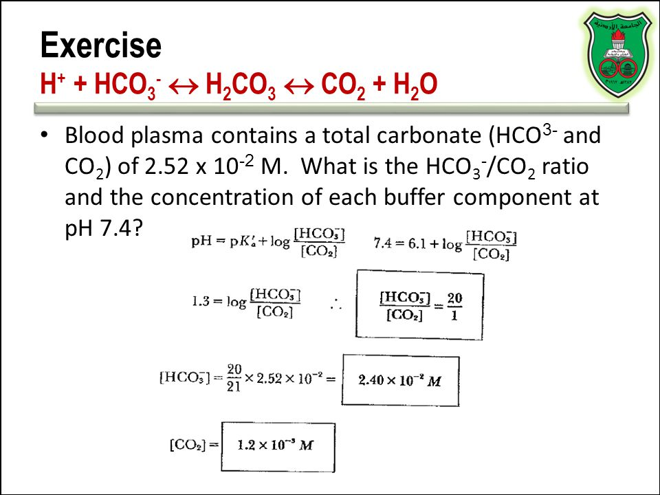 Exercise H+ + HCO3-  H2CO3  CO2 + H2O