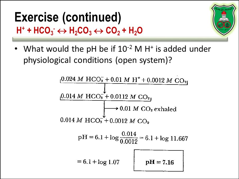 Exercise (continued) H+ + HCO3-  H2CO3  CO2 + H2O