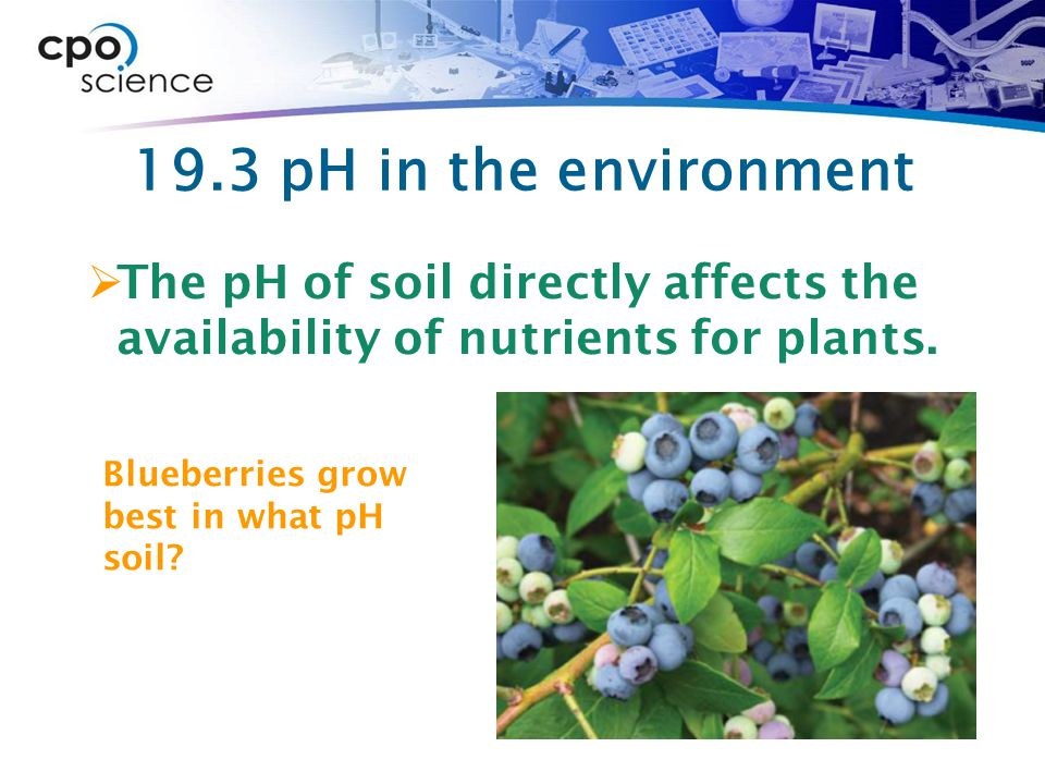 19.3 pH in the environment The pH of soil directly affects the availability of nutrients for plants.