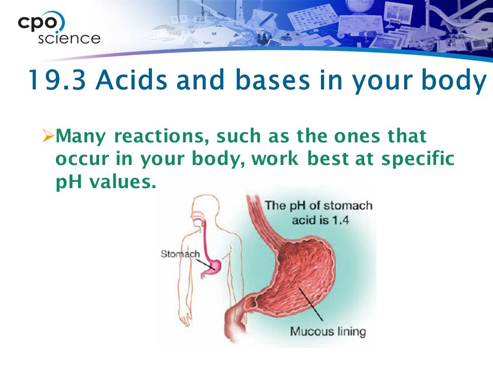 19.3 Acids and bases in your body