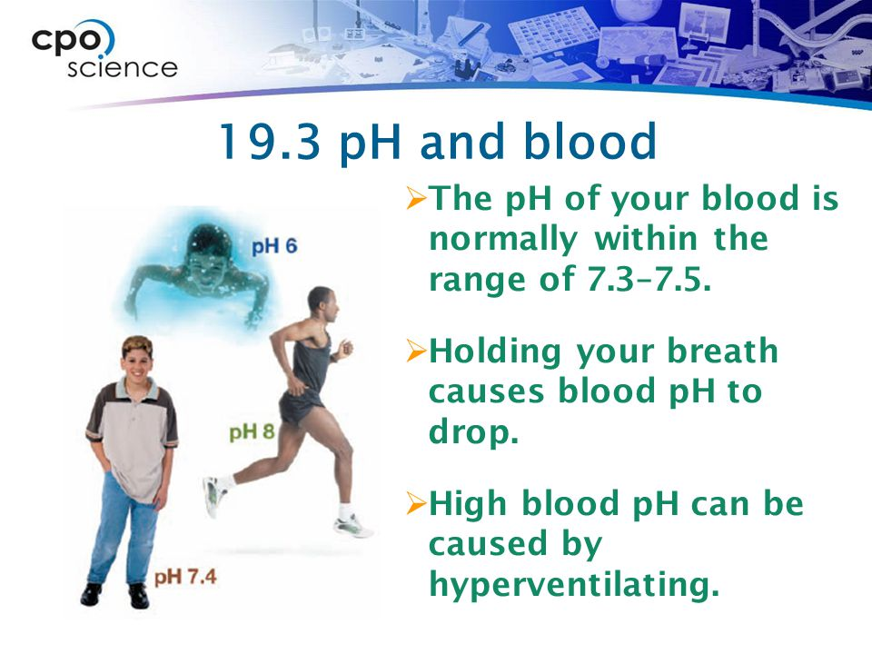19.3 pH and blood The pH of your blood is normally within the range of 7.3–7.5. Holding your breath causes blood pH to drop.