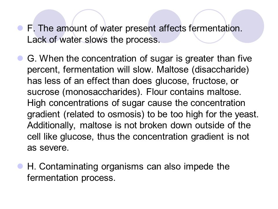 F. The amount of water present affects fermentation
