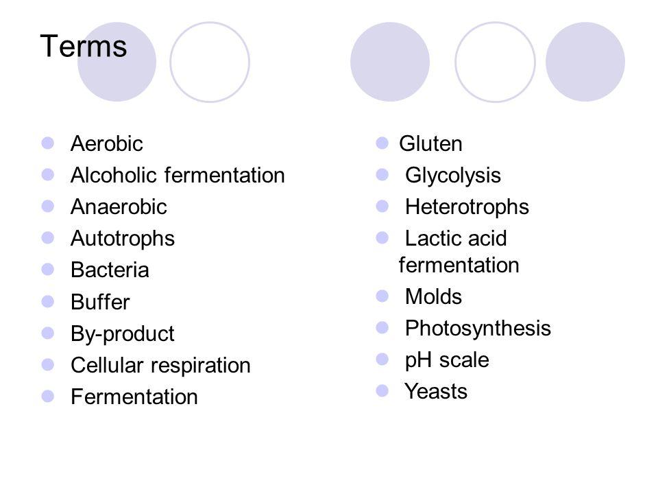 Terms Aerobic Alcoholic fermentation Anaerobic Autotrophs Bacteria