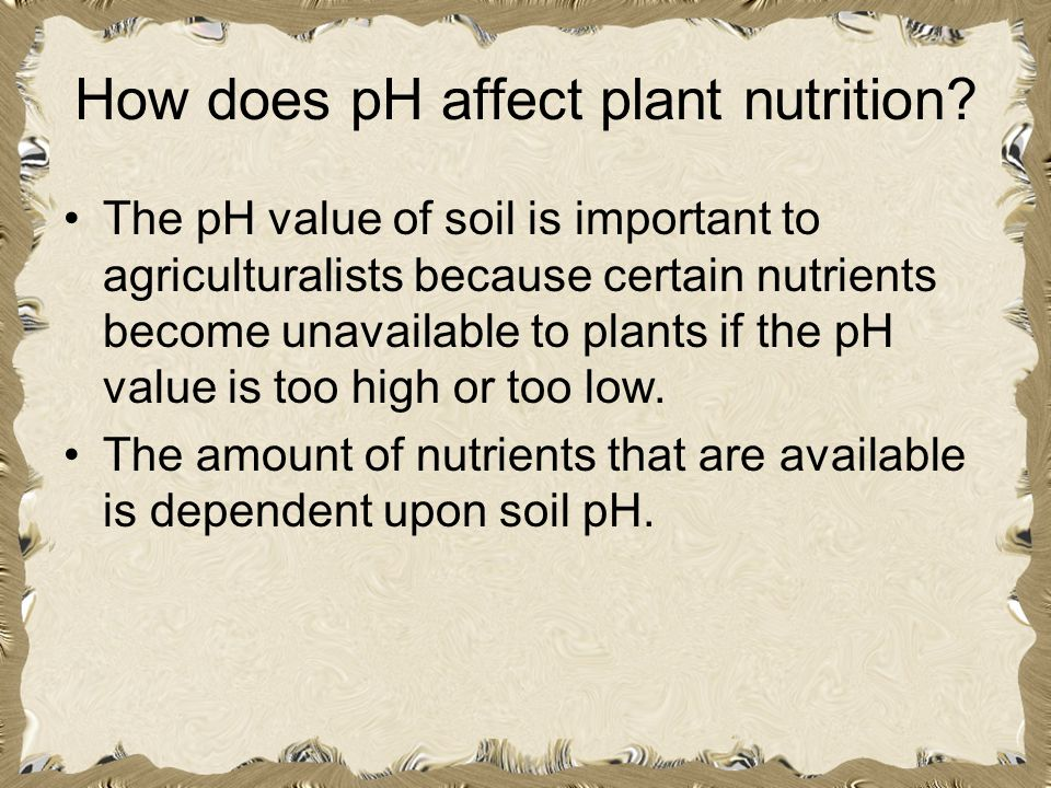 How does pH affect plant nutrition