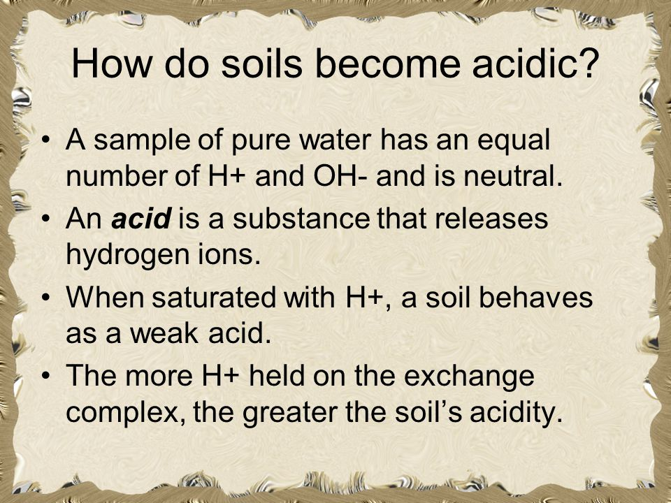 How do soils become acidic