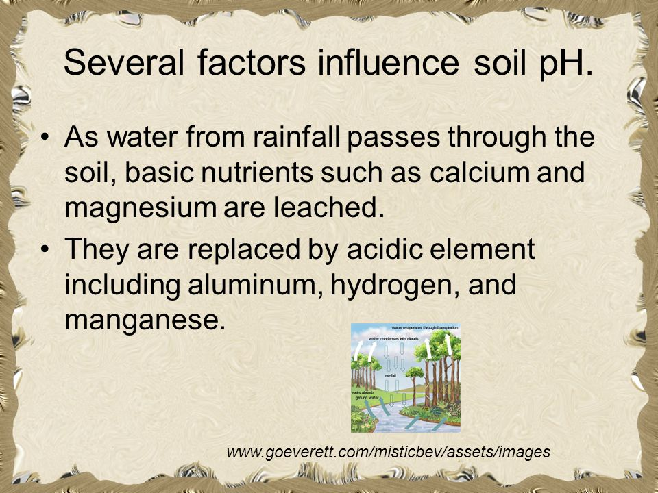 Several factors influence soil pH.