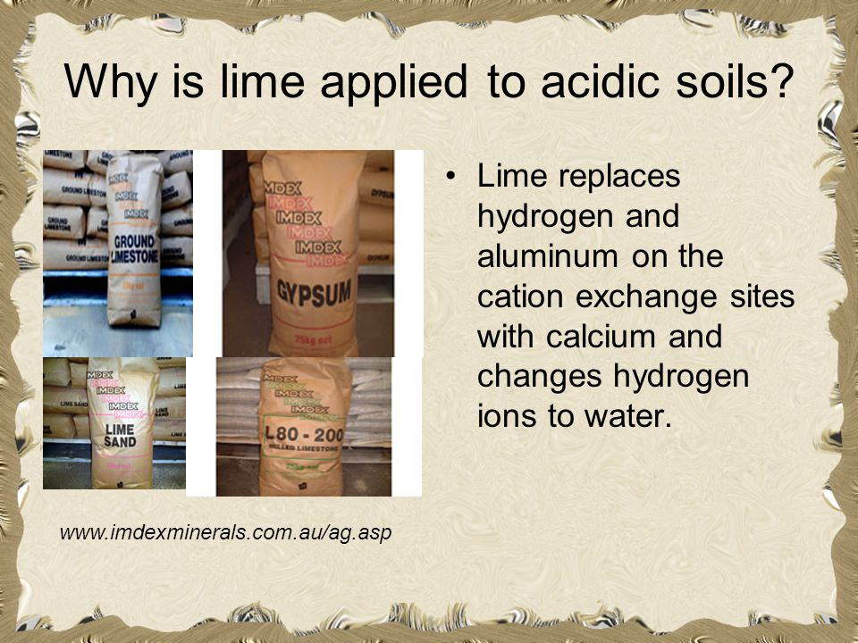 Why is lime applied to acidic soils