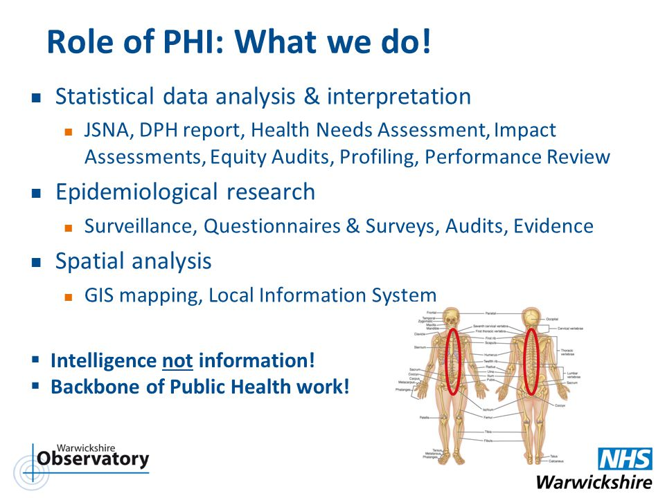 Role of PHI: What we do! Statistical data analysis & interpretation