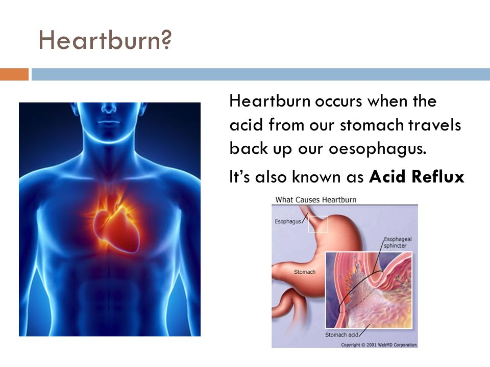 Heartburn. Heartburn occurs when the acid from our stomach travels back up our oesophagus.