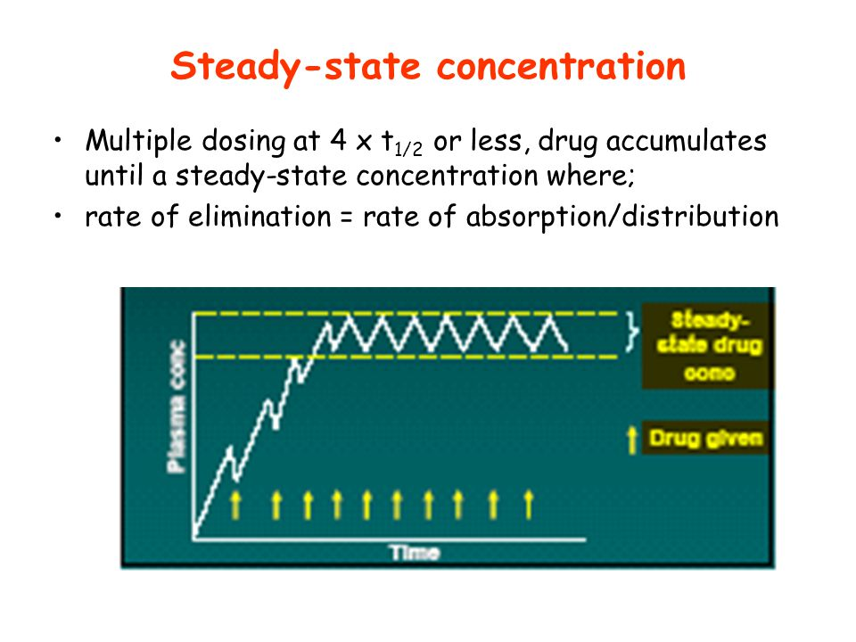 Steady-state concentration