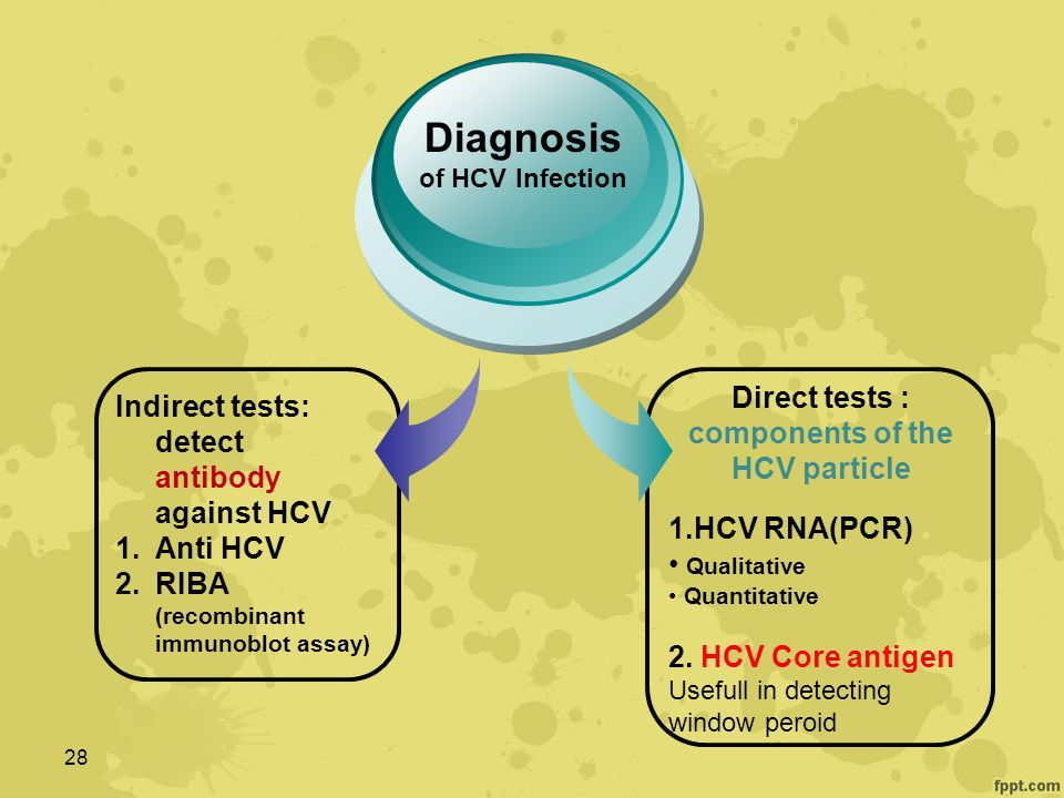 Direct tests : components of the HCV particle