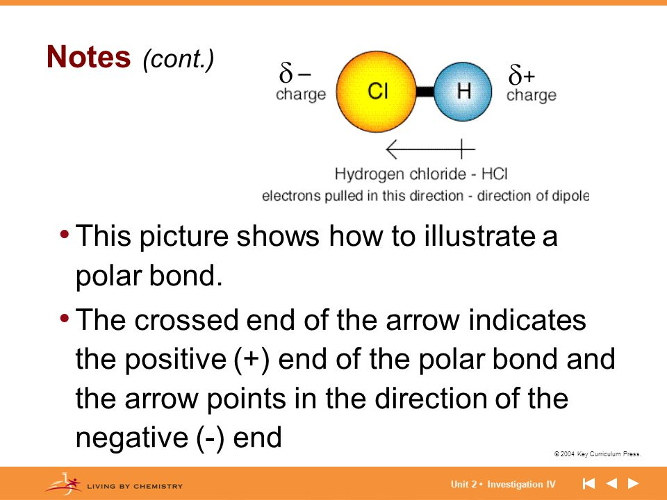 Notes (cont.)   This picture shows how to illustrate a polar bond.