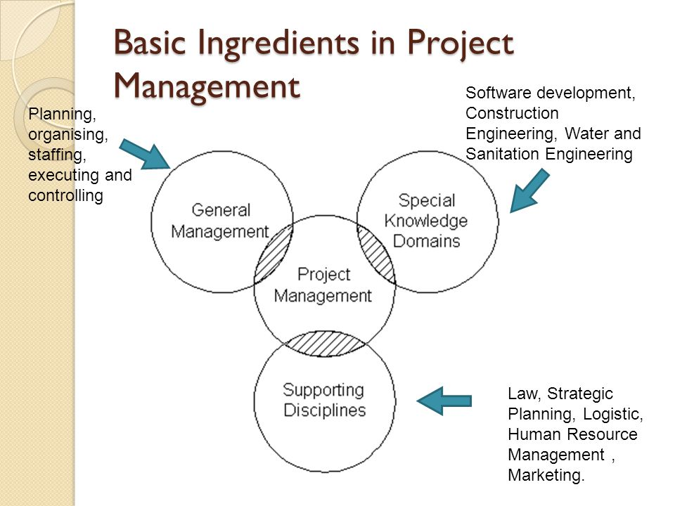 Basic Ingredients in Project Management